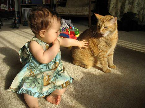 Ser madre y la confianza
